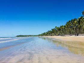 ほったらかしの大自然!ブラジルの秘境「ボイペバ島」
