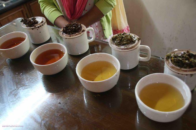 でもやっぱり紅茶は欠かせない!農園を訪れてみよう