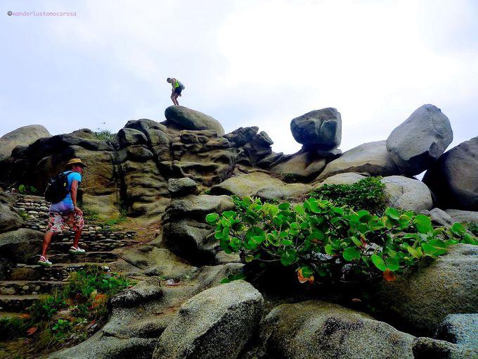 ジャングルの中を、そして岩も乗り越えるトレッキング!