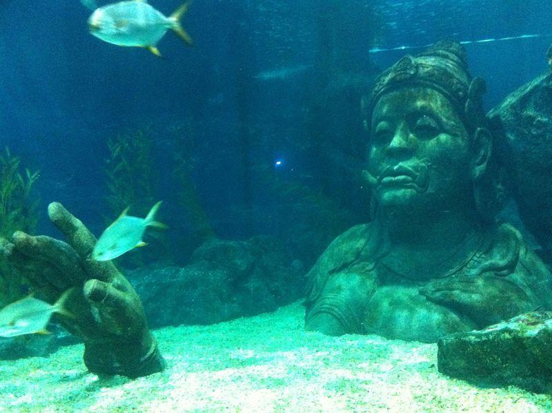 タイ・バンコクのデパ地下水族館はショッピングの合間に楽しめちゃう!
