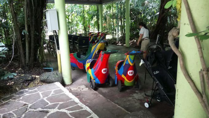 バンコク近郊!子連れ家族に人気の観光スポット