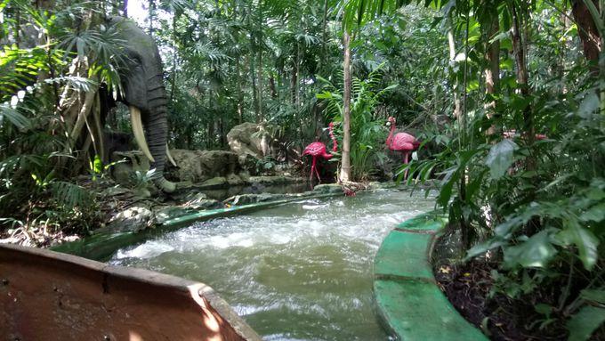 おっぱいにジャングル!期待を裏切る園内の仕掛け