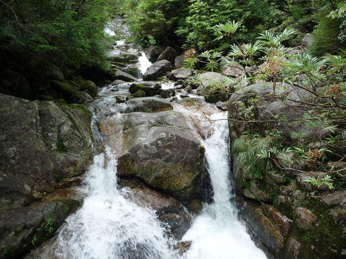 マイナスイオンで癒される『滝』巡り