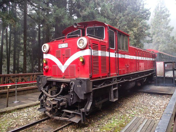 台湾の世界遺産候補「阿里山森林鉄道」で旅気分は最高潮