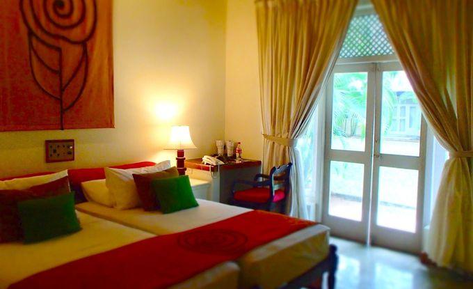 観光で疲れた体が癒やされる、シンプルモダンで広い客室
