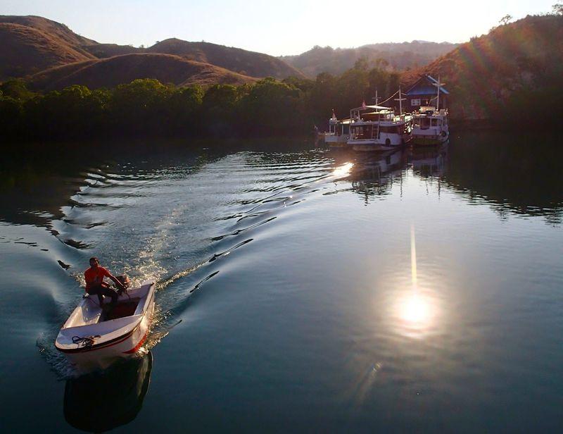 ドキドキが止まらない!「コモド国立公園」へは船で上陸