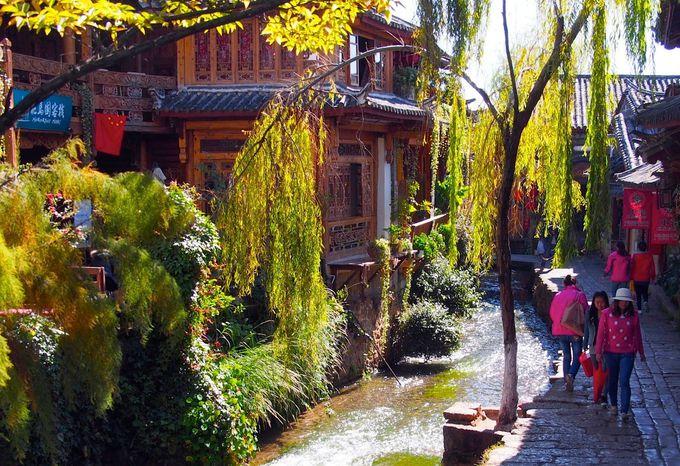 数百年前から変わらぬ姿をとどめる「麗江の旧市街」