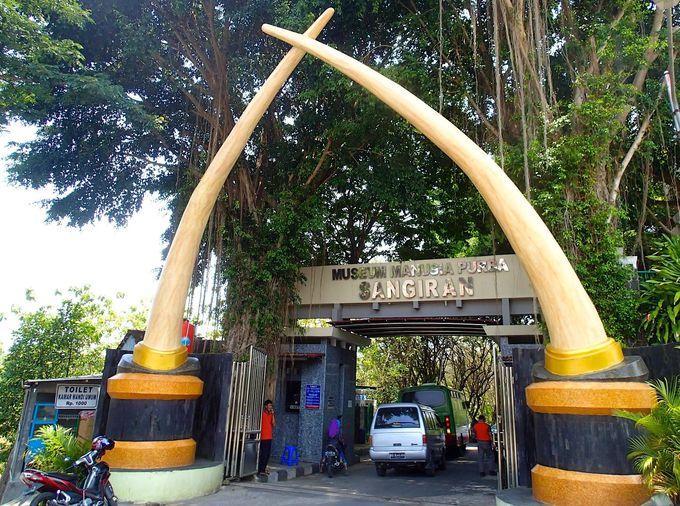 マンモスの牙がお出迎え「サンギラン博物館」