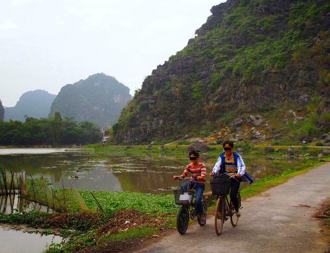 自転車に乗って巡るエコツアーも!