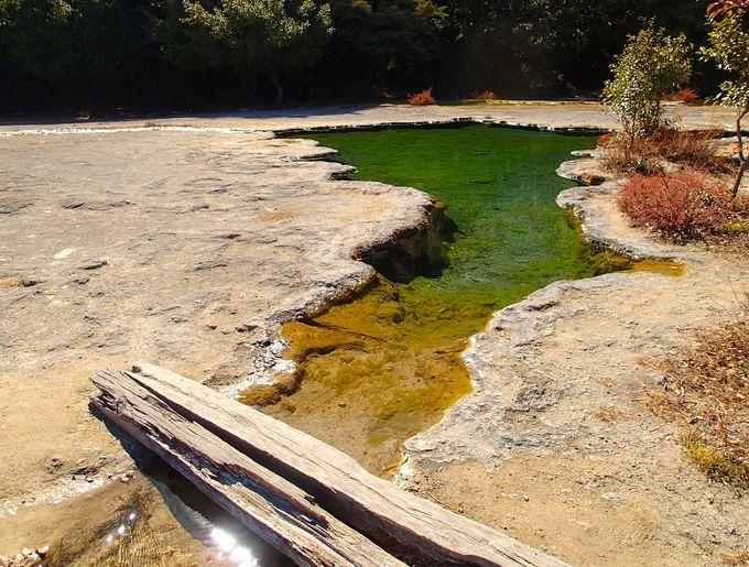 森の奥から流れる石灰の川