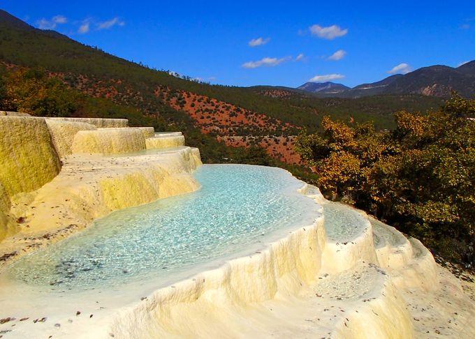 世界遺産「白水台」は美しき自然と動植物の天国