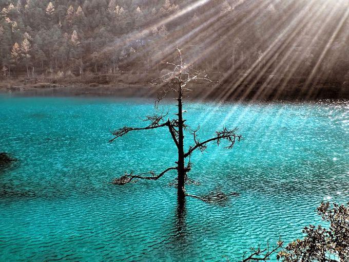 名付け親はイギリス人!?桃源郷の美しき青き水をたたえる「蒼月谷」