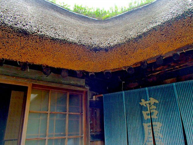 茅葺き屋根に歴史を感じる築150年の古民家の宿