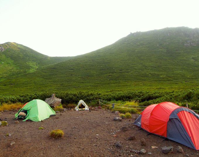 羅臼平でテント泊。満点の星空を見上げよう。