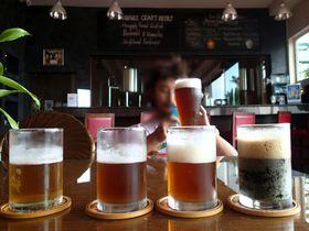プノンペン最上級のクラフトビールは5つ星ホテルで優雅に飲もう!「ヒマワリ・マイクロブルワリー」