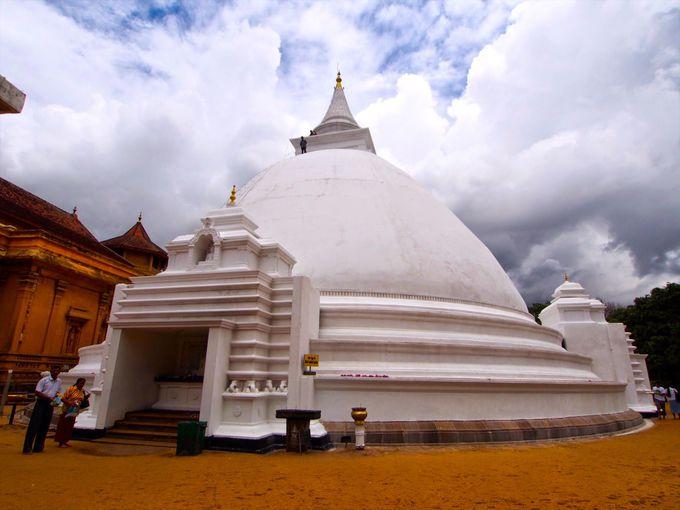 ブッダも3度訪れた魅力溢れる国「スリランカ」