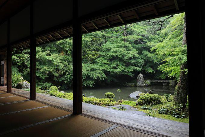 極楽浄土の世界を表した池泉回遊式庭園