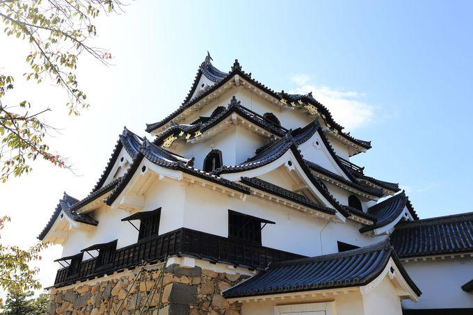 5.井伊家14代の居城!国宝の天守を有する「彦根城」