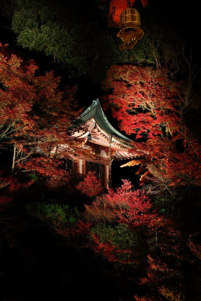 静かな風情を残した知る人ぞ知る京の名所 山科「毘沙門堂」