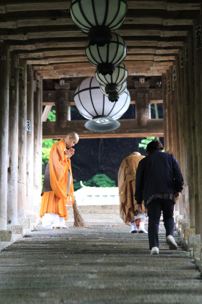 「花の御寺」と称される長谷寺