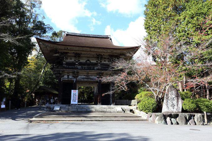 仏像や建築物など文化財の宝庫「三井寺」