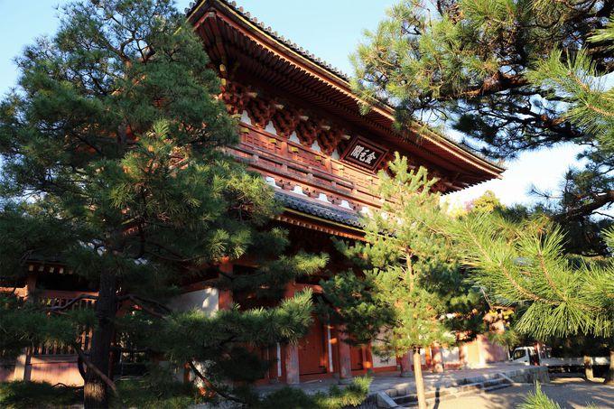 高桐院は大徳寺境内の北東に