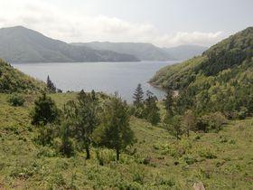 隠岐諸島・海士のおもてなし!観光協会手作りの「島旅」でグルメ&風景を満喫