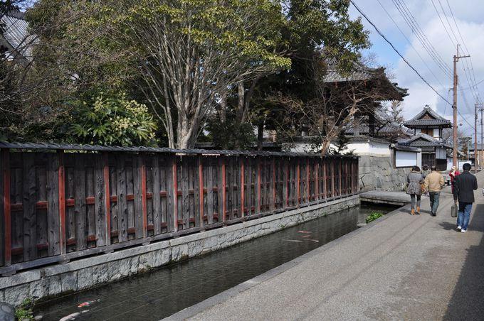 近江商人の街は見どころ豊富な街。