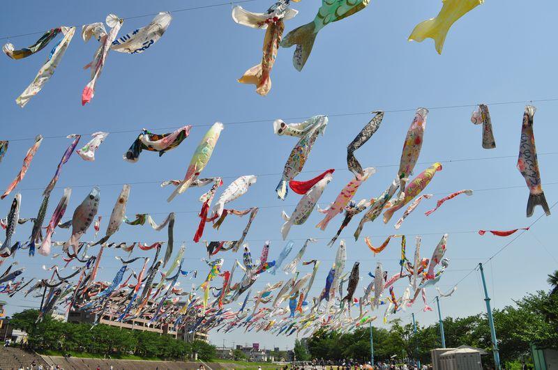 千匹もの鯉が空を舞う!大阪・高槻「こいのぼりフェスタ1000」