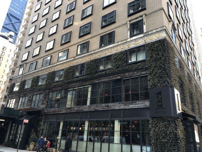 サステナブルと贅沢が両立する「1 Hotel Central Park」