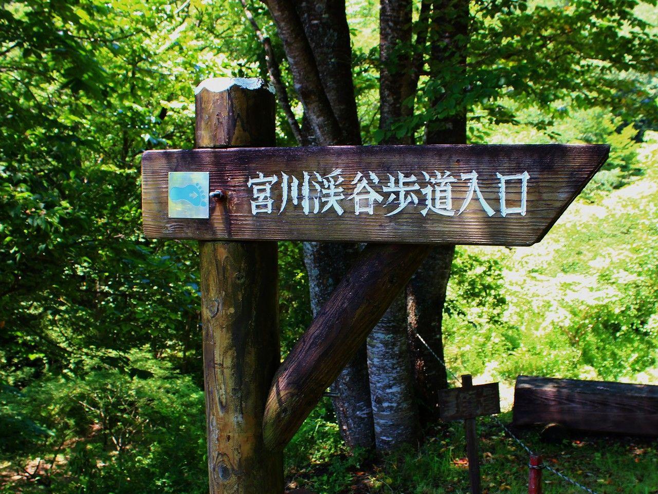 5種類あるハイキングコース!お奨めのコースは宮川渓谷歩道コース