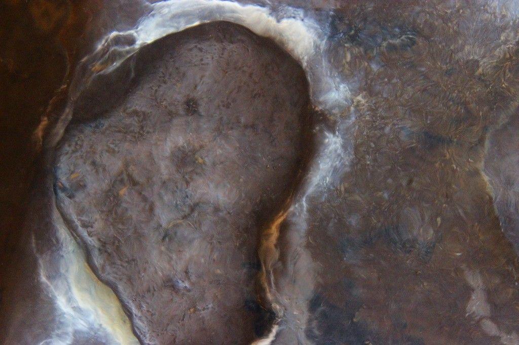 ハート石を見つけたら、片足づつ乗せてみよう!二人の愛がもっと、もっと深まるかもネ!