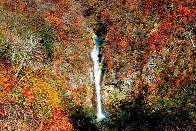 ハイキングの折り返し地点には、絶景の『駒止の滝』が待っている!