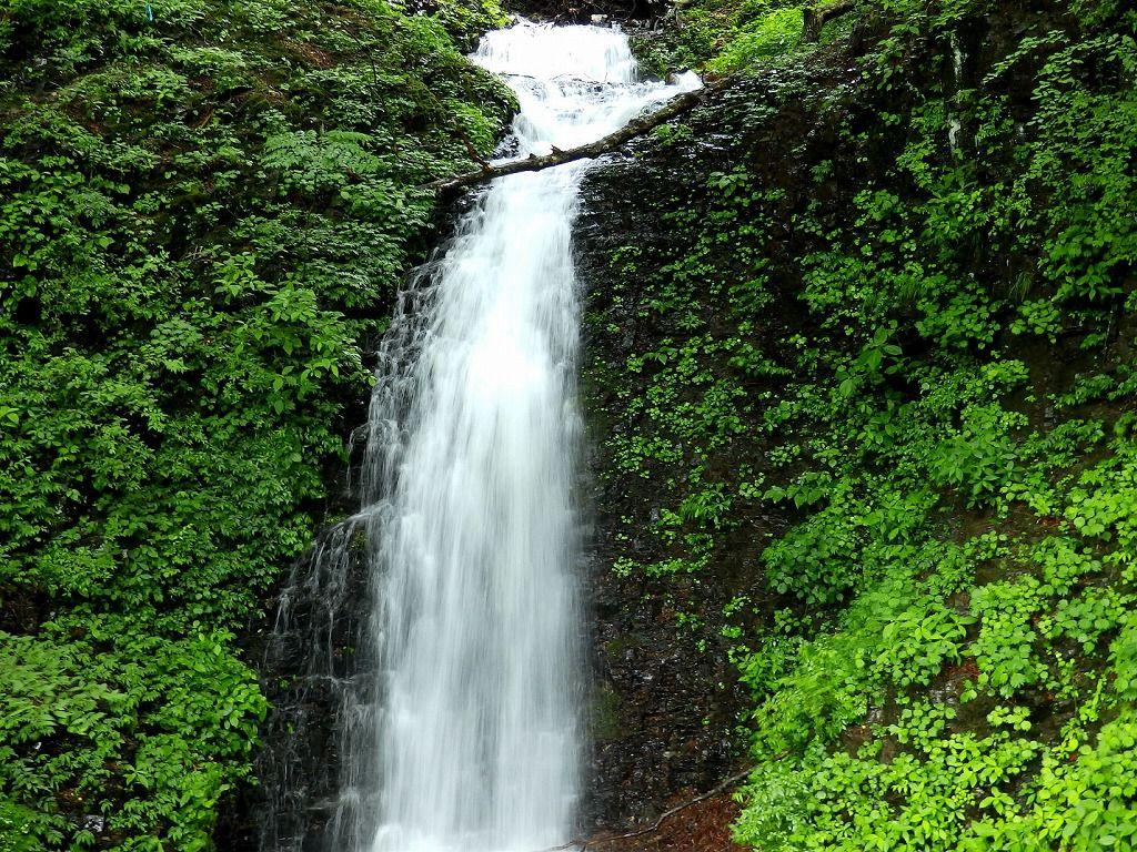 『仙髯(せんぜん)の滝』は名称通りの、仙人の髯のような滝!