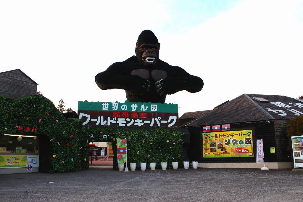 """""""ふれあい広場""""もお見逃しなく!"""