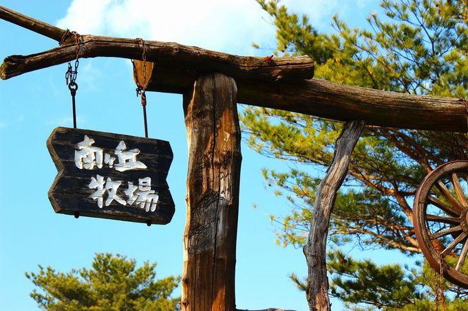那須高原の大地に根差した、自然を大切にする観光牧場!