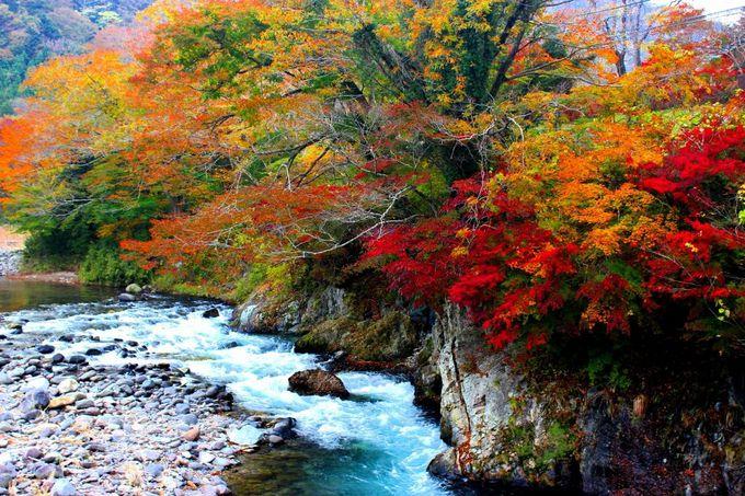 「塩原バレーライン」道路沿いの渓流すべてが絵になる圧巻の美しさ!