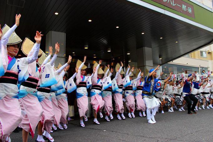 「ホテルサンバレー那須」が阿波踊り一色、これはもう踊らにゃ、そんそん!!
