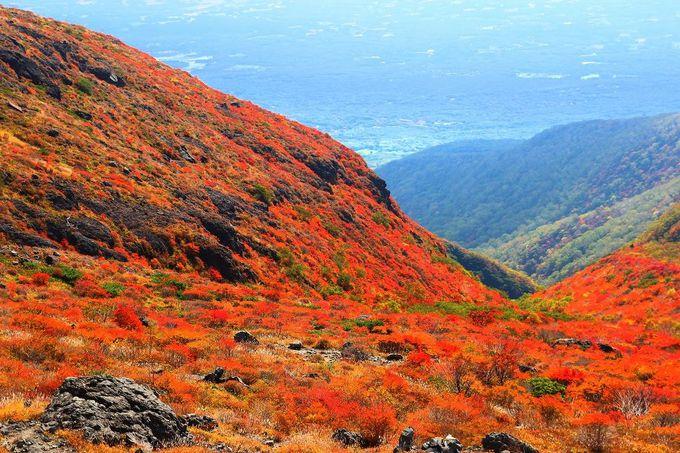 那須高原を眼下に見下ろす「日の出平」からの眺望!