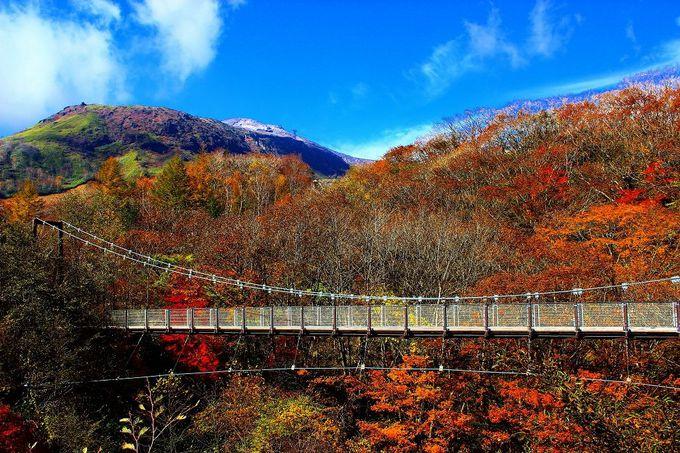 那須岳(茶臼岳)をバックに、標高1212mに架かる「弁天吊り橋」