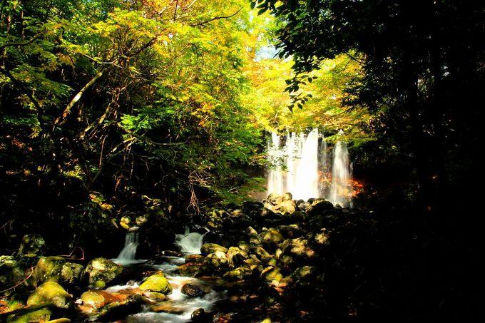 那須高原の西側、神秘的な「乙女の滝」は駐車場からわずか60m!