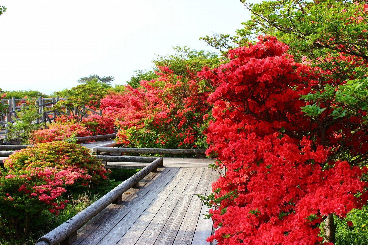 晴れた日には、那須高原が一望できる絶景のヴューポイント