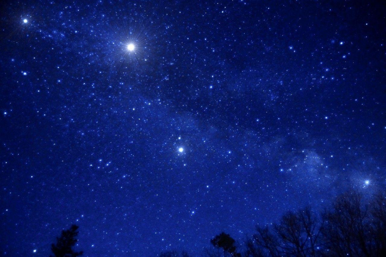 那須高原の星空と高山植物を楽しむ「マウントジーンズ 那須ゴンドラ」