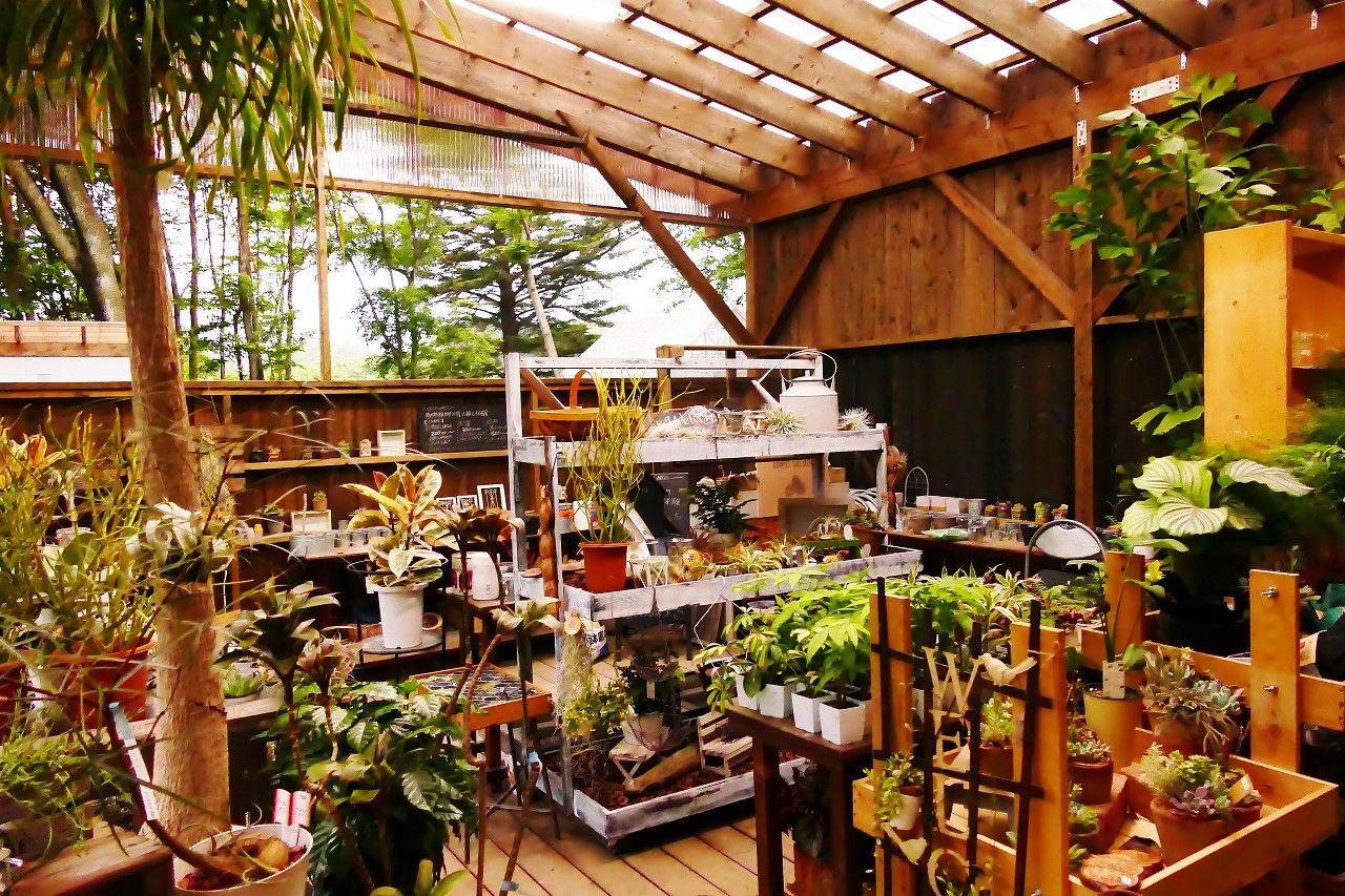 園芸売店やいつでも楽しめるワークショップも充実しています