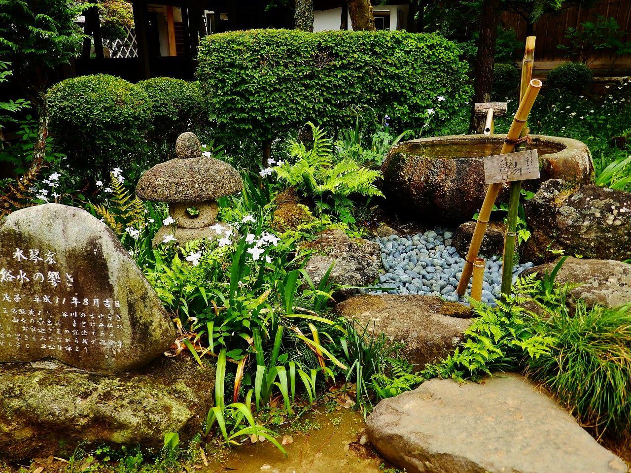 """大雄寺境内""""水琴窟""""の音色と紫陽花が初夏へといざないます!"""