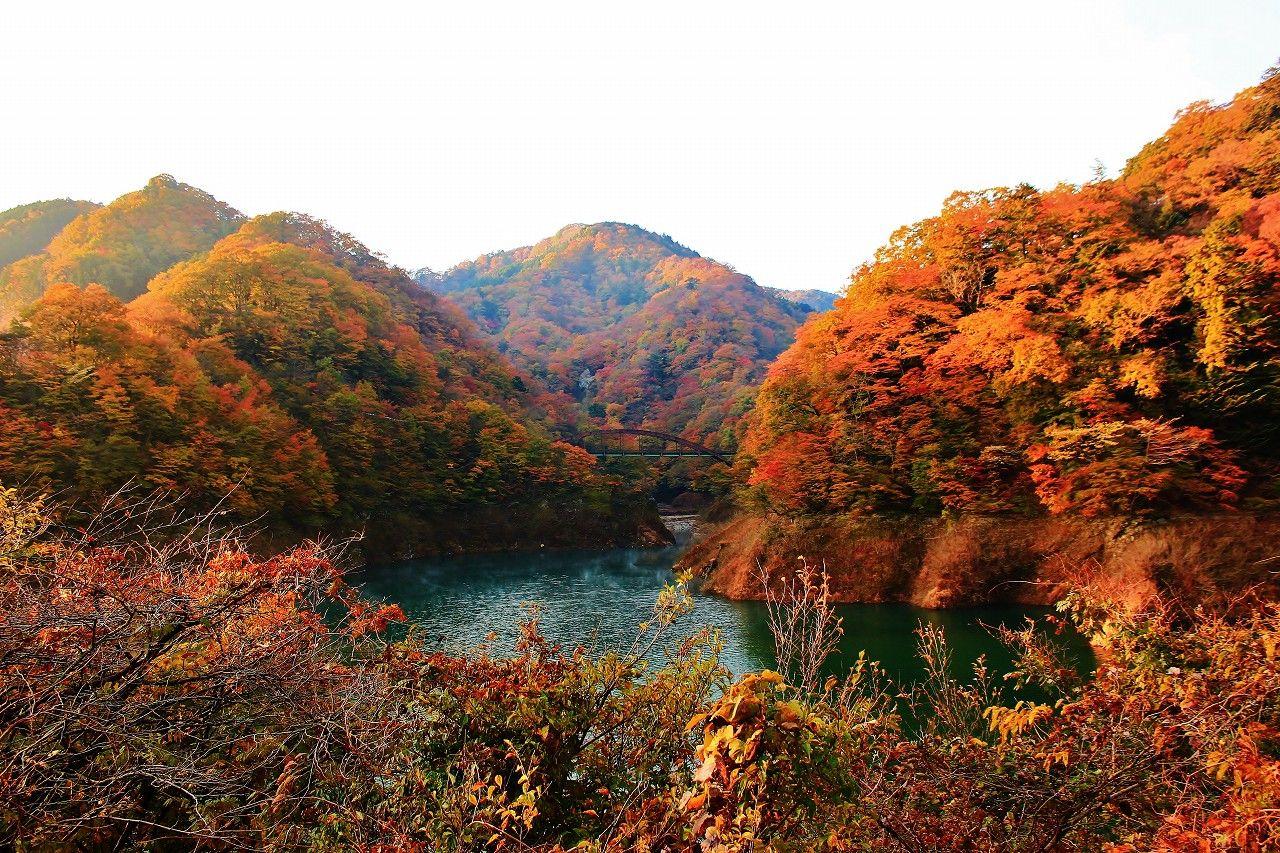 本州一の「もみじ谷大吊り橋」川面に映る紅葉はまさに絶景(栃木)