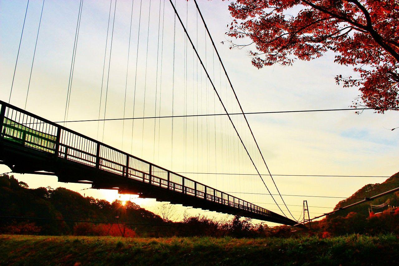 その名の通り本州一の「もみじ谷大吊り橋」は絶景紅葉の名所