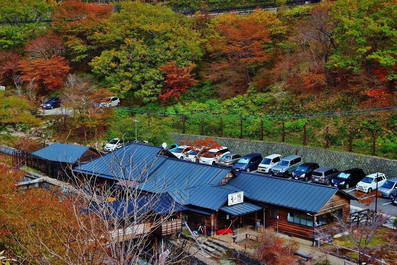栃木県最古!那須温泉の源泉はここだ!白濁の名湯「鹿の湯」