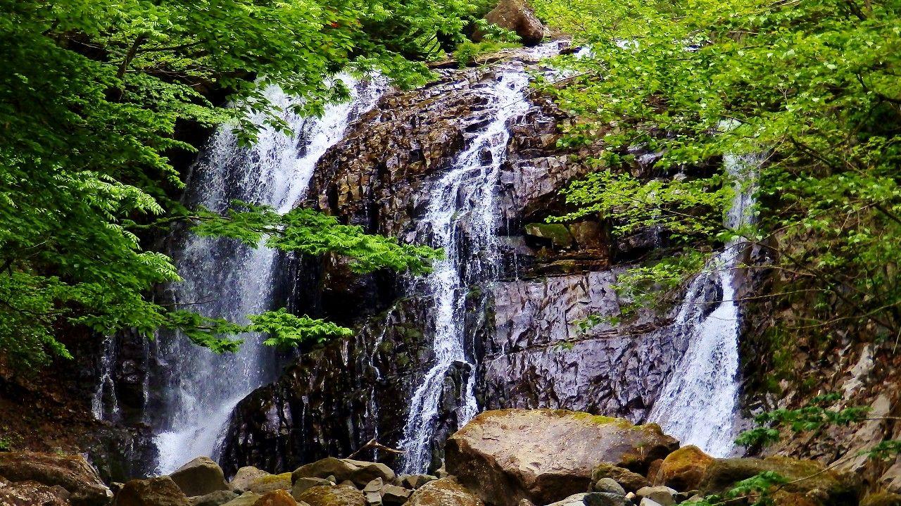 桜沢の最奥に待ち構える巨大な咆哮霹靂(ほうこうへきれき)の滝
