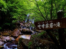 """まるで""""もののけの森""""那須スッカン沢&桜沢5滝で感じる自然の神秘"""